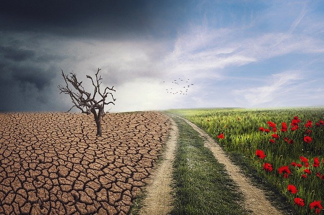 How Can AI Tackle Climate Change